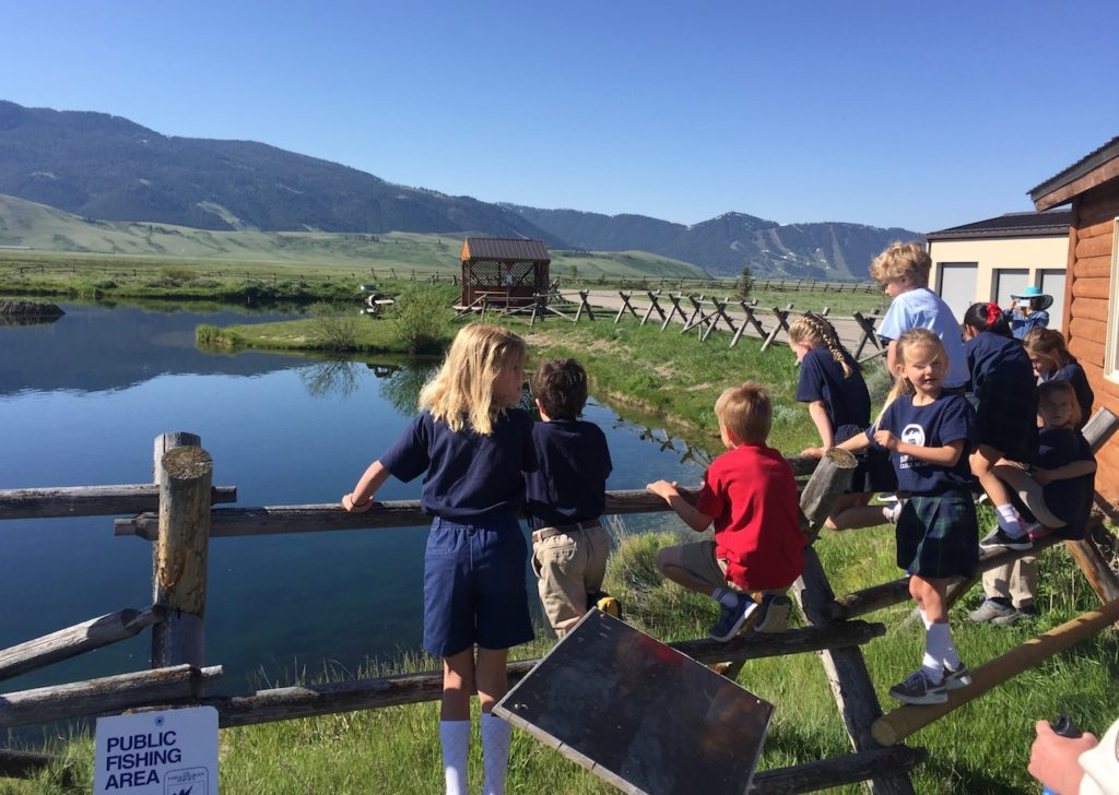 First grader field trip is 39 staycation 39 information day for Fish hatchery jobs