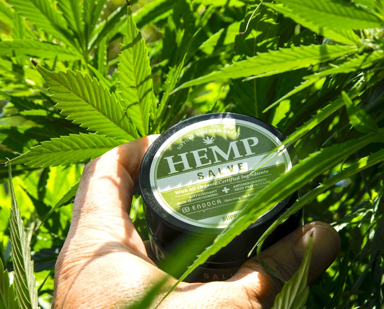 Bill legalizing hemp, CBD oil will be signed into law this